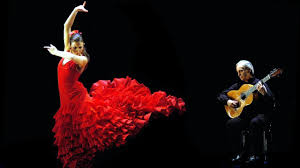 flamenco dance schools in india dance with me india