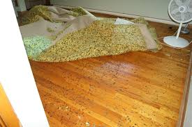 Can You Install Laminate Flooring Over Carpet Cleaning How Do I Remove Stuck Melted Foam From Under Carpet