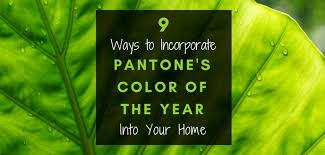 2017 Color Of The Year Pantone Pantone U0027s 2017 Color Of The Year In Your Home Budget Dumpster