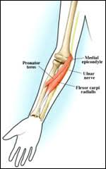 Collateral Ligaments Ankle Ulnar Collateral Ligament Sprain Broken Arrow Ucl Injury