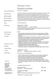 resume exle account executive resume resume template for manager position this is sales director