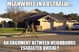 Australia Meme - kangaroo fight memes imgflip
