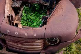 auto junkyard philadelphia home