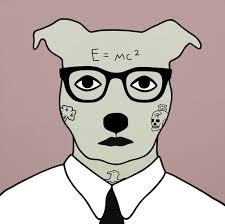 dog illustrations by rona green dog milk pinterest dog