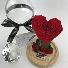 enchanted rose that lasts a year beauty the beast belle dome real roses that last a year