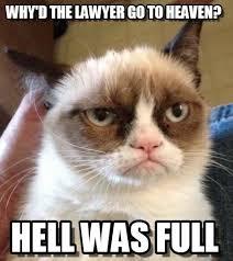 Lawyer Cat Meme - lawyer why d the lawyer go to heaven on memegen