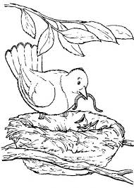 nature scene coloring pages backyard animals and nature coloring books free coloring pages