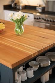 Douglas Fir Kitchen Cabinets Brown Kitchen Countertops Attractive Home Design