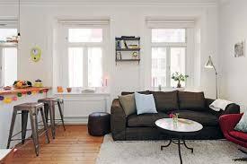 Enchanting Apartment Living Room Decor Ideas Of Ideas Beautiful - Apartment living room decor ideas