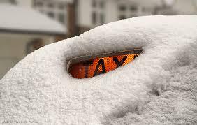 this year is going to snow marco venturini autieri
