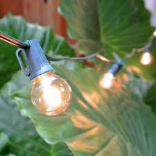 Clear Patio String Lights by G50 Globe String Lights Set Clear C7 Patio Lights