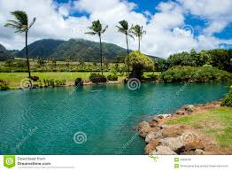 Hawaii lakes images Hawaiian lake stock photo image 44598197 jpg