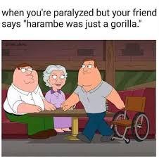 Peter Griffin Meme - the best peter griffin memes memedroid