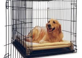 dog beds kuranda dog beds