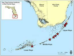 general location of pilosocereus robinii populations in the florida