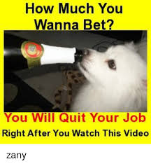 Wanna Bet Meme - how much you wanna bet you will quit your job right after you