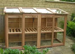 greenhouses at bramshall staffordshire england woodpecker