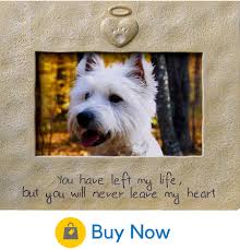 dog memorial 35 beautiful memorial ideas for your cherished dog