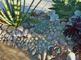 Succulent Rock Garden by Succulent Gardens Front Yard