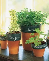 pot planting ideas 122 cute interior and porcelain planters seem