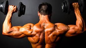 Bench Press Hypertrophy The Anti Bodybuilding Hypertrophy Program T Nation