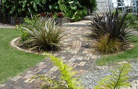 native plants new zealand new zealand garden design echinops garden design