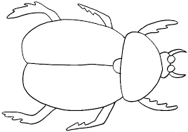 preschool coloring pages bugs coloring bug coloring pages bug coloring pages grasshopper on grass