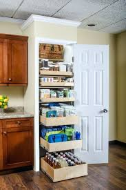 Kitchen Cabinet Pantry Ideas Closets 35 Clever Ideas To Help Organize Your Kitchen Pantry Diy