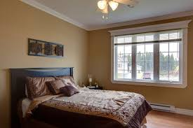 paint color for dining room with dark furniture the best bedroom