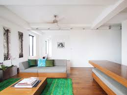 home design dark hardwood floor with green shag rug in small