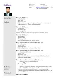 example resumer sample resume