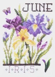 flowers of the month flowers of the month june iris cross stitch pattern by stoney