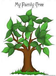best 25 tree templates ideas on blank family tree