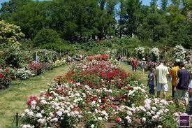 Prospect Park Botanical Garden Prospect Park Botanical Gardens Dunneiv Org