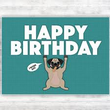 Pug Birthday Meme - best funny dog birthday cards products on wanelo