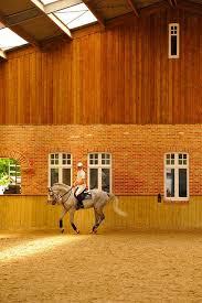 239 best riding arenas images on pinterest dream barn