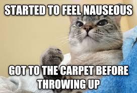 Success Cat Meme - livememe com success cat