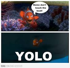 Yolo Meme - nemo you only live once yolo meme yolo and meme