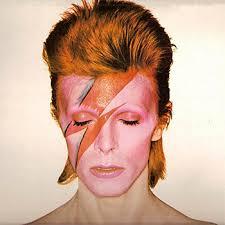 Halloween Costumes Parrots Halloween Costumes Gingers David Bowie Ziggy Stardust