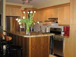 Free Kitchen Cabinet Sles Marvellous Free Standing Kitchen Cabinets For Sale Metal Kitchen