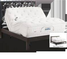 Sleep Number Adjustable Bed Instructions Sleep Number Bed What My Sleep Haven Looks Like Things To Have