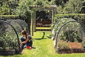 Houzz Garden Ideas Garden Decorating Ideas Landscape Shabby Chic Style With Garden