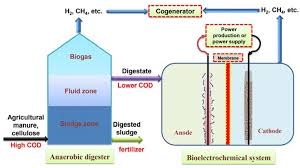 agriculture free full text development of bioelectrochemical
