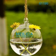clear glass terrarium globe clear glass terrarium globe suppliers
