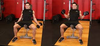 Bench Bicep Curls How To Do Incline Inner Biceps Curl Perfectly Beautify Yourself