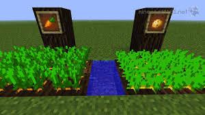 how to make a vegetable garden in minecraft best idea garden