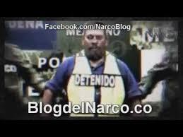 Memes De Cochiloco - amazing memes de cochiloco cochiloco y el chapo keywords cochiloco