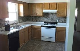 cabinet pleasing home depot kitchen for home prodigious home
