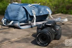 the best dslr cameras for beginners entry level models digital