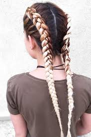 show pix of braid 24 cute double dutch braids ideas double dutch braid dutch braids